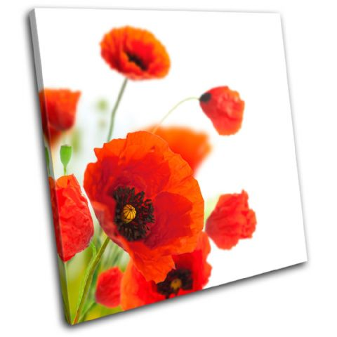 Poppies Flower Floral - 13-0814(00B)-SG11-LO